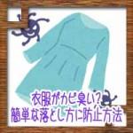 衣服がカビ臭い?簡単な落とし方取り方に防止方法について