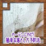 カーテンにカビ!簡単な落とし方予防法に重曹の洗濯方法について