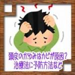 頭皮のかゆみにフケはカビが原因?治療法に予防方法など