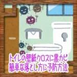 トイレの壁紙クロスに黒カビ!簡単な取り方落とし方に予防方法