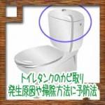トイレタンクのカビ取り!発生原因や掃除方法に予防法は?