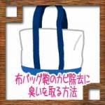 布バッグ鞄のカビ除去に臭いを取る方法!予防法は?