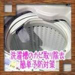 洗濯槽のカビ取り除去!簡単予防対策に酢や重曹の掃除方法