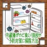 冷蔵庫がカビ臭い!原因や予防対策にカビ取り掃除方法は?