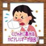 くしゃみに鼻水はカビアレルギーが原因?梅雨時の対処法治し方