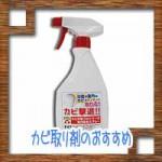 カビ取り剤のおすすめ!浴室や壁紙クロスの掃除方法に種類や注意点