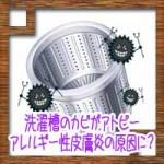 洗濯槽のカビがアトピーアレルギー性皮膚炎の原因に?予防対策方法