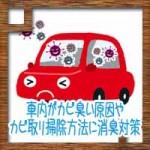 車内がカビ臭い!原因やカビ取り掃除方法に消臭対策!