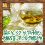 腸内カンジダ(カビ)の予防や治療改善に効く食べ物飲み物
