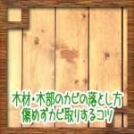 木材・木部のカビの落とし方防止方法!傷めずカビ取りするコツ