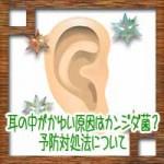耳の中がかゆい臭い原因はカビのカンジダ菌?予防対処法について
