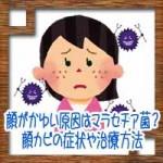 顔がかゆい原因はカビのマラセチア菌?顔カビの症状や治療方法