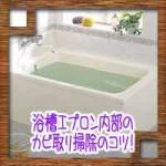 浴槽エプロン内部のカビ取り掃除のコツ!外し方や業者の料金