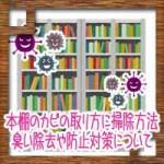 本棚のカビの取り方に簡単掃除方法!臭い除去や防止対策について