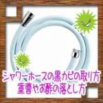 シャワーホースの黒カビの取り方!重曹やお酢の落とし方に予防法