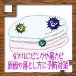 タオルにピンクや黒カビ!原因や落とし方洗濯方法に予防対策