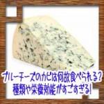 ブルーチーズのカビは何故食べられる?種類や栄養効能がすごすぎる!