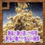麹菌(コウジカビ) と麹の違いや特徴!酵素の働きや食品の種類