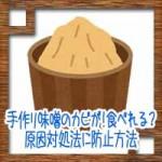 手作り味噌にカビが!食べれる?原因対処法に防止方法