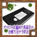 ビデオテープのカビ取り除去は可能?DVDにデジタル化するには