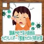 頭痛や吐き気の原因はカビアレルギー?部屋カビの予防対策